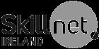 skillnet-ireland